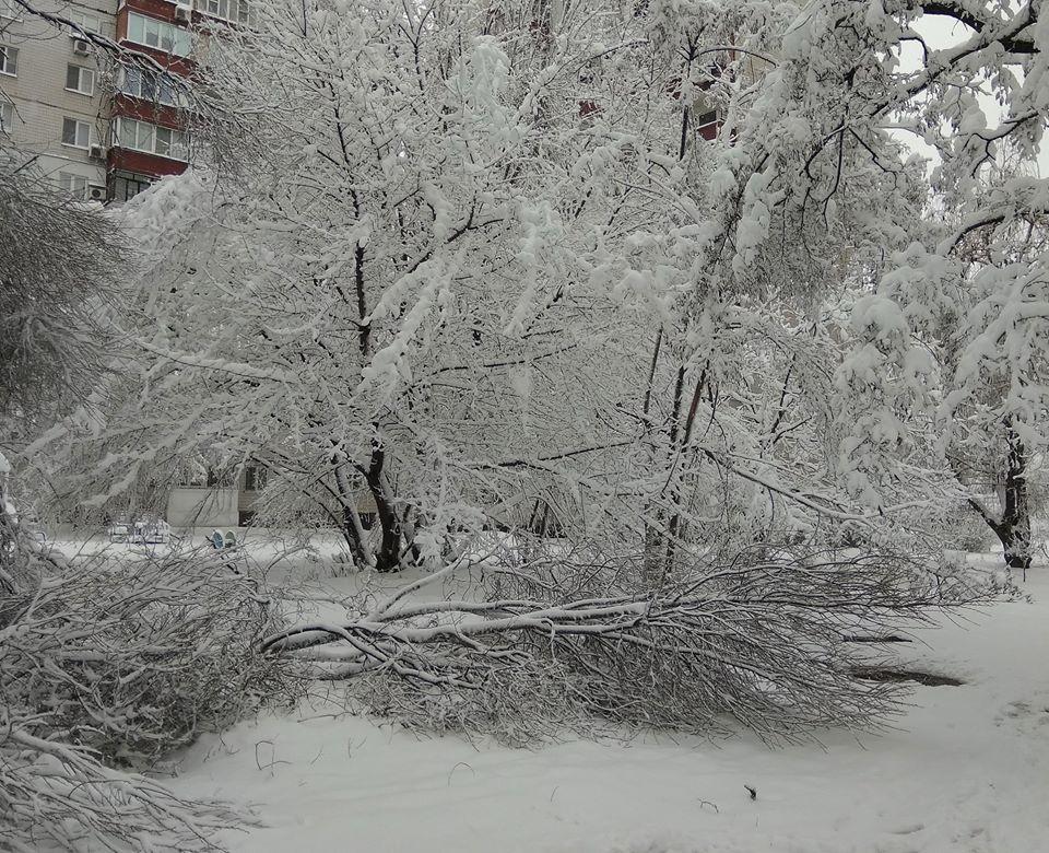 Снегопад в Донецке 2020