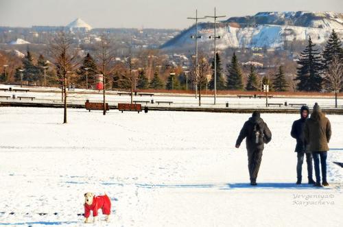 Люди, город и погода зимой 2017 на фото Евгении Карпачевой