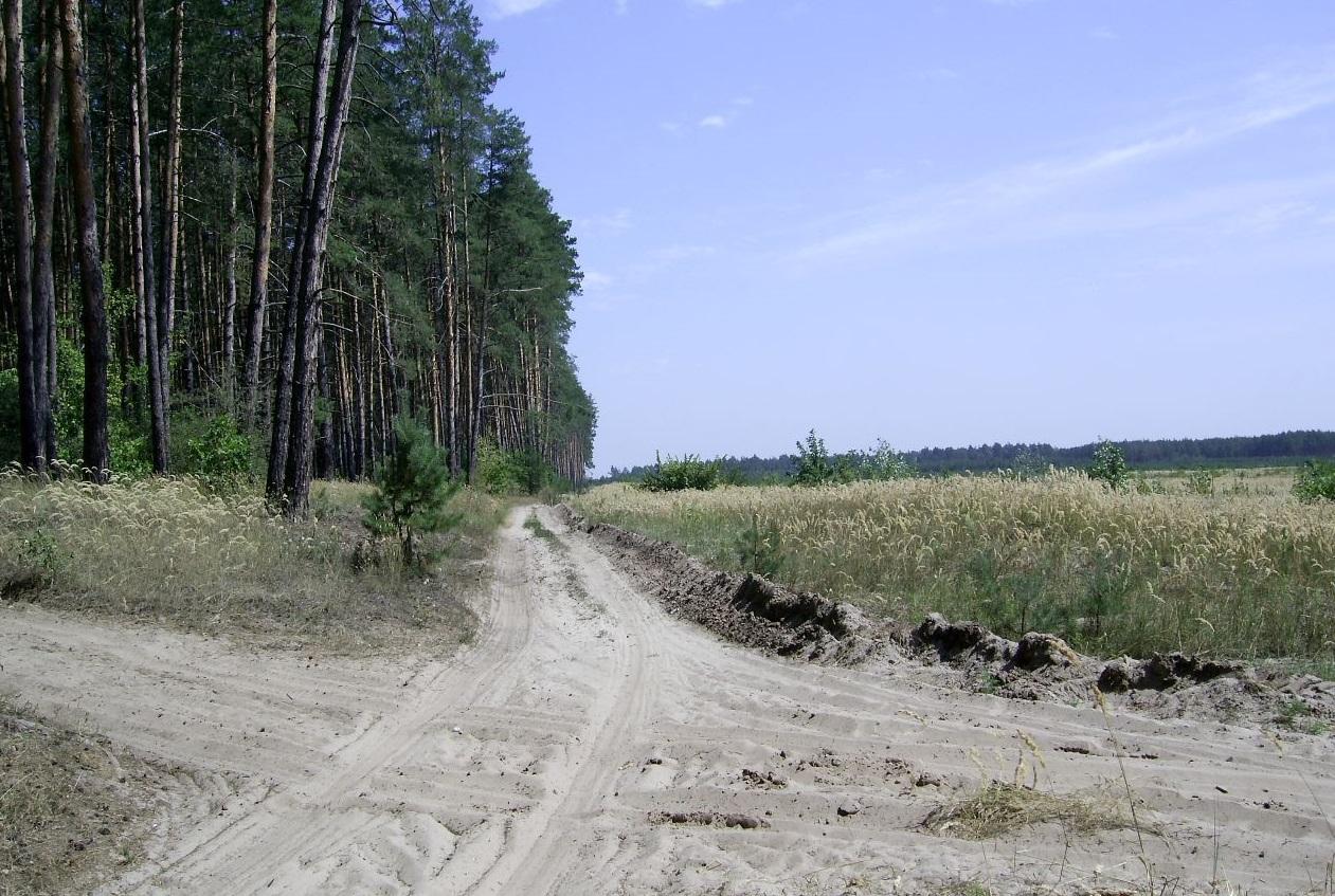 Окрестности села Яцкое в Донецкой области