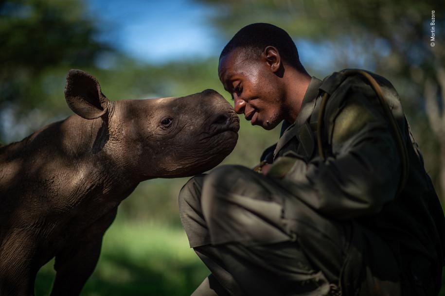 Лучшие фото природы носорог и человек